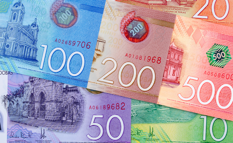 Central Bank Of Nicaragua Foreign Exchange