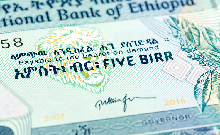 Ethiopian government appoints new bank governor - Central