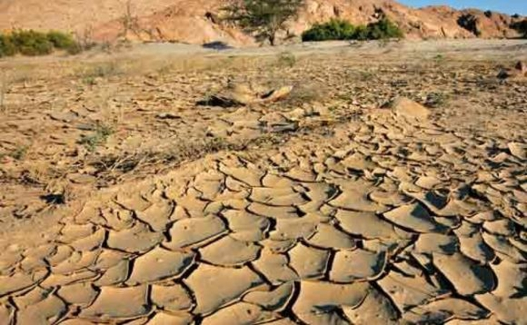 Parched earth in a dry riverbed