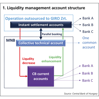 1. Liquidity management account structure
